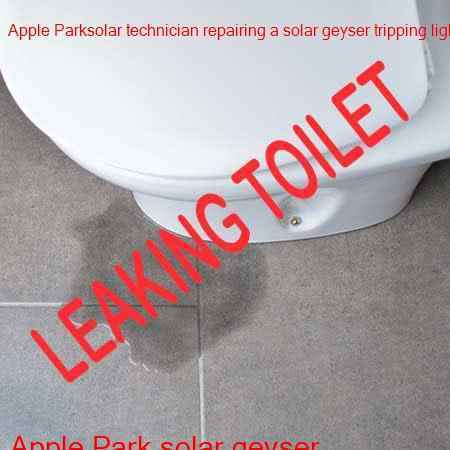 Apple Park leaking toilet repair while you wait with a guarantee and no call out fee
