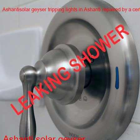 Ashanti leaking shower fixed by a qualified and certified plumber with a free call out fee in Johannesburg.