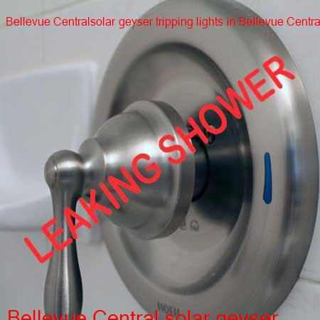 Bellevue Central leaking shower repair done while you wait with a free call out fee.