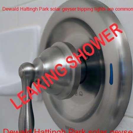 Dewald Hattingh Park leaking shower