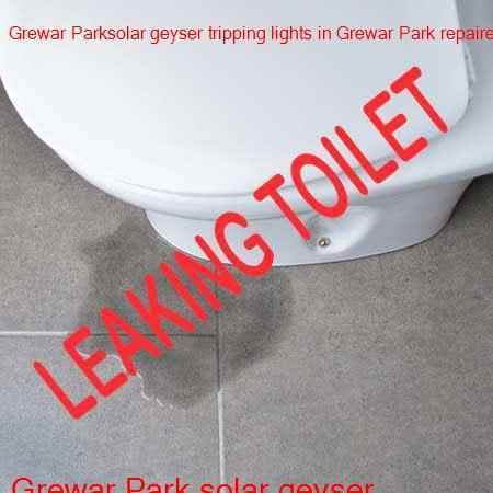 Grewar Park leaking toilet