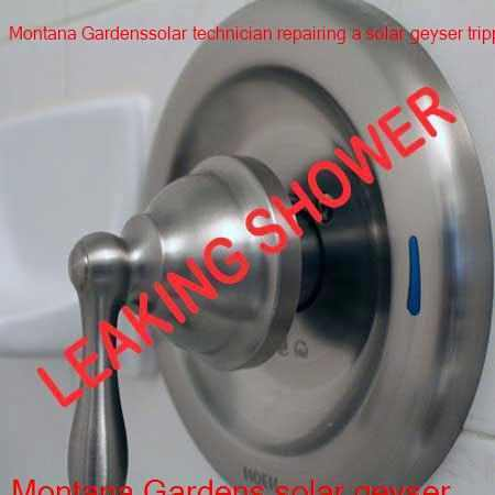 Montana Gardens leaking shower