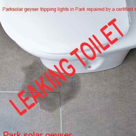 Park leaking toilet