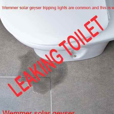 Wemmer leaking toilet