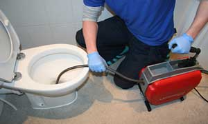 How to unblock a toilet in Gauteng